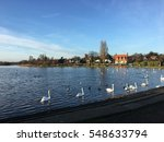 Thorpeness Pond With Swans And...