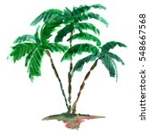 Watercolor Green Palm.