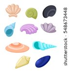 Frame Of Sea Shells  Vector...
