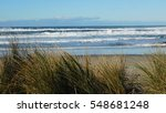 Small photo of Dune grass and surf