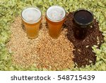 Home Brew Beer Brewing...