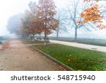 siena  tuscany   december 12 ... | Shutterstock . vector #548715940