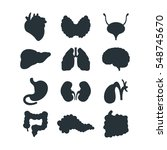 internal organs silhouette... | Shutterstock .eps vector #548745670