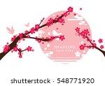 vector of modern cherry blossom ... | Shutterstock .eps vector #548771920