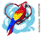 colorful red parrot with blue... | Shutterstock .eps vector #549010798