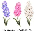set vintage watercolor elements ...   Shutterstock . vector #549091150