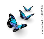 Stock photo butterfly isolated on white d illustration 54909442