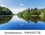 summer rural landscape. trees... | Shutterstock . vector #549342778