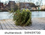 Christmas Tree Thrown Away On...