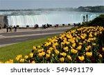 Niagara Falls And Spring Seaso...
