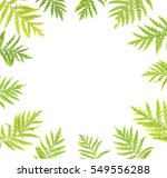 decorative frame  consisting of ... | Shutterstock . vector #549556288