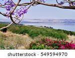 The Sea Of Galilee And...