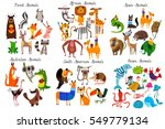 Stock vector big collection of cute cartoon animals from different continents forest australian african south 549779134