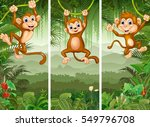 set of three monkey with... | Shutterstock . vector #549796708