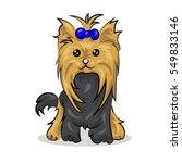 cartoon cute vector yorkshire... | Shutterstock .eps vector #549833146