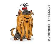 cartoon cute vector yorkshire... | Shutterstock .eps vector #549833179