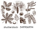 Vector Collection Of Hand Draw...