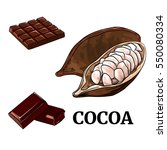 hand drawn of cacao fruit and... | Shutterstock .eps vector #550080334