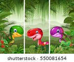 set of dinosaur with tropical... | Shutterstock .eps vector #550081654