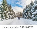 Winter Snowy Landscape In...