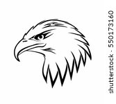 bald eagle head logo. hawk... | Shutterstock .eps vector #550173160