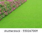 green artificial grass with...   Shutterstock . vector #550267009
