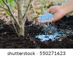 farmer hand giving chemical... | Shutterstock . vector #550271623