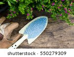 chemical plant fertilizer with...   Shutterstock . vector #550279309