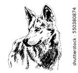 hand sketch wolf's head. vector ... | Shutterstock .eps vector #550380874