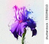 Luxury Purple Iris  White...
