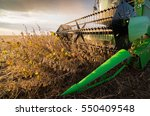 Harvesting Of Soybean Field...
