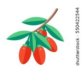 goji berries vector... | Shutterstock .eps vector #550422544