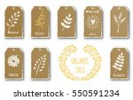 vector set of cute gift tags... | Shutterstock .eps vector #550591234