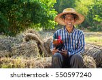 Asian Farmer Wearing Rattan Ha...