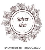 herbs and spices label.... | Shutterstock .eps vector #550702630