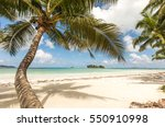 Tropical Beach View On The...