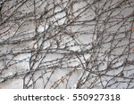 background  texture wall from... | Shutterstock . vector #550927318