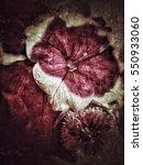 grunge flower background texture | Shutterstock . vector #550933060
