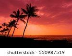 kona sunset against palm trees... | Shutterstock . vector #550987519