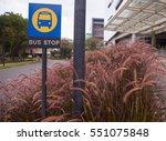bus stop sign near clump of... | Shutterstock . vector #551075848
