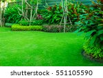 green lawn  the front lawn for... | Shutterstock . vector #551105590