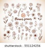 set of doodle sketch flowers in ...   Shutterstock .eps vector #551124256