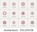 linear ornamental logo... | Shutterstock .eps vector #551129158
