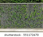 modern metal fence and leave | Shutterstock . vector #551172670
