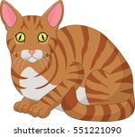 cartoon funny cat isolated on... | Shutterstock .eps vector #551221090