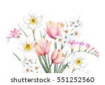 watercolor illustration of... | Shutterstock . vector #551252560