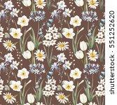 watercolor botanical floral... | Shutterstock . vector #551252620