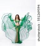 Beautiful Arabic Belly Dancer...