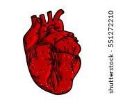 hand drawn human heart.... | Shutterstock .eps vector #551272210