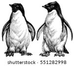 penguins drawing. adelie... | Shutterstock .eps vector #551282998